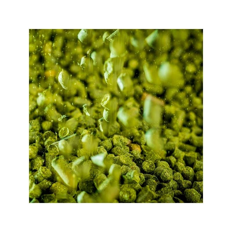 Perle humle 100g